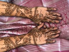 kiran hands (HennaLounge) Tags: wedding india mill love oakland bride bay berkeley sunnyvale hands san francisco lafayette gulf marin sonoma fremont arabic east valley napa kiran henna montclair mehendi alameda sausalito mehndi tiburon rockridge khalijee wwwhennaloungecom