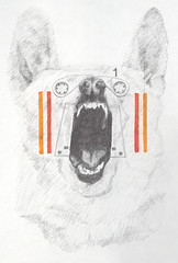 K90 Series 03 (grmblshi) Tags: art pencil project drawing canine marker graphite