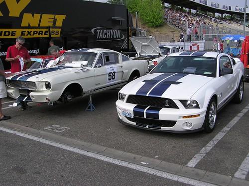Ford Mustang Shelby GT 350 & Ford Mustang Shelby GT 500