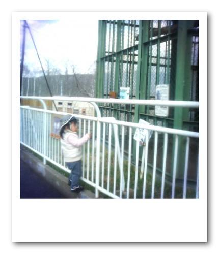 Kushiro Zoo