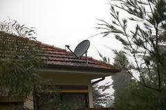 satellite dish (yewenyi) Tags: roof cloud house rain fog geocaching dish satellite australia bluemountains nsw newsouthwales aus leura oceania missleahsboot gcphwe