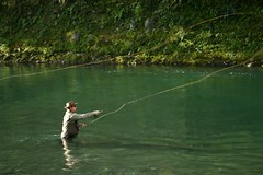 newzealand river fishing flyfishing taupo tongariro tongariroriver
