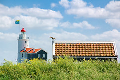 Marken 2007 (kruijffjes) Tags: old city travel blue sunset summer wallpaper vacation sky white house holiday holland color tree green tourism church nature netherlands beautiful dutch grass sunshine weather clouds sunrise d50 landscape happy one spring nikon scenery colorful europe village sheep background small scenic nederland tourist nikond50 only concept gdk conceptual picturesque marken touristic gdk