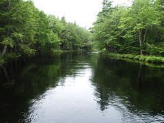 Mersey River in Kejimkujik N.P. #2