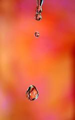 Burnin Drops II (~Mina~) Tags: orange motion color macro water closeup canon waterdrop action peach drop droplet tap beautful tapwater efs60mmf28macro efs60mmf28 efs60mmf28macrousm