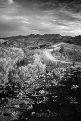 along the razorback - link to the flinders ranges set on flickr