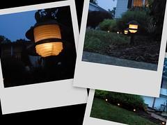 Lawn Lights