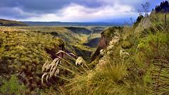 Landscape in Cotopaxi NP / Ecuador (flowerikka) Tags: ecuador cotopaxinp landscape sky weather outdoor grasshill vulcan clouds