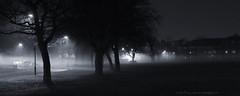 _C0A6739REWS Shifting Mist I, © Jon Perry, 6-12-16 zax (Jon Perry - Enlightenshade) Tags: jonperry enlightenshade arranginglightcom 61216 20161206 fog night darkness monochrome trees
