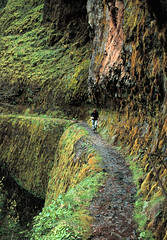 Eagle Creek Trail (Stephen P. Johnson) Tags: oregon creek river eagle hiking columbia trail scanned gorge