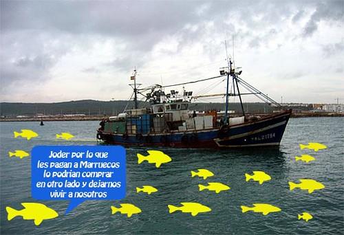 barco pesquero 1