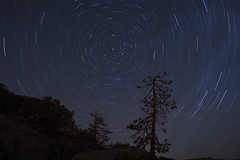 You Spin Me Right Round... (After Dark Photo) Tags: night stars trails startrails long exposure cold tree california polaris lights constellations sky spring canon rebelxt rebel 1855mm nature outdoors wilderness rock granite circles starcircles starformations sierranevada forest shaverlake quartermoon astronomy mountains fresno clovis naturesfinest vle i500 interestingness interestingness97