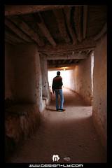 Sebha old city (aljaded) ( ) Tags: world africa heritage sahara 350d italian sand desert dunes muslim north palm arabic libya tripoli digitalrebelxt colony touareg libyan ghadames benghazi libia libye   libyen ubari  lbia kissndigital  jamahiriya libi  libiya liviya libija      lbija  lby  libja lbya liiba livi