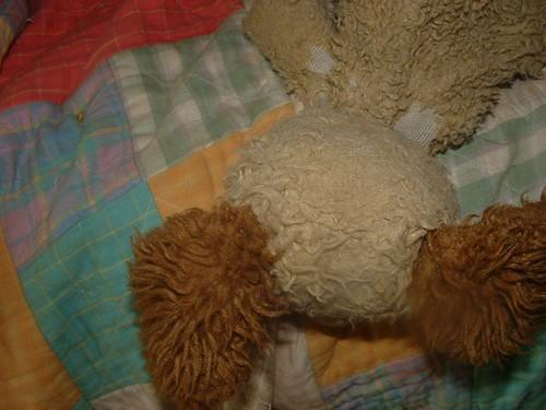 Scruffy Puppy B