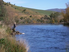 trout fishing (hollis_corey) Tags: fish mountains water fishing fisherman snowy serenity nsw trout snowymountains troutfishing khancoban swampyplainsriver