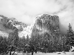 El Capitan-1127-.jpg (YOSEMITEDONN) Tags: snow clouds yosemite elcapitan flickrsbest