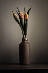 Three Tulips - by Monster.