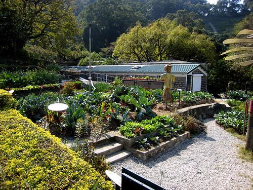 organic link building