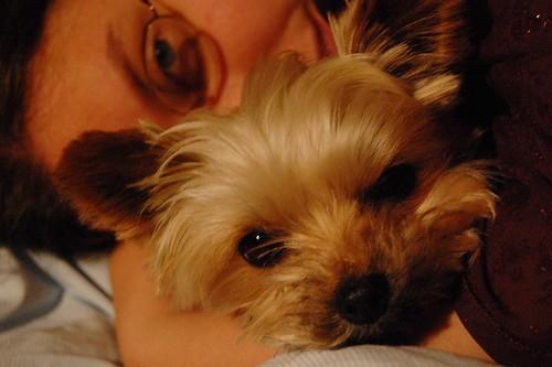 EFIT 2007-05-12. 00:31 - Sofie och Nova gosar