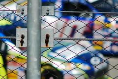 race day 2 (tennisproian) Tags: cars race fence nascar