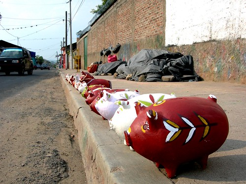 Pigs on the pavement in Esteli