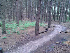 160507_003 (Speeds Cycles, Bromsgrove) Tags: cannockchase mountainbikes followthedog garyfisherhifi speedscycles
