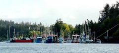 Vancouver Island  -  Boat Basin