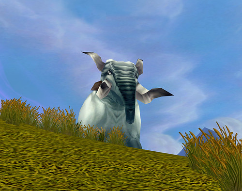 Where in WoW (05-25-07)