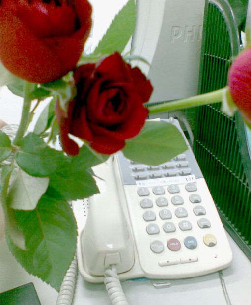 roses in office