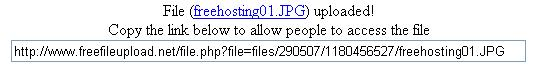 freefileupload.net