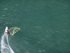 Windsurfing the Bay (Kontaktabzug) Tags: sanfrancisco wind surfing windsurfing sanfranciscobay kiss1