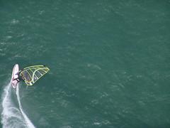 Windsurfing the Bay (Kontaktabzug) Tags: sanfrancisco wind surfing windsurfing sanfranciscobay kiss1