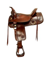Saddles Sell Online?