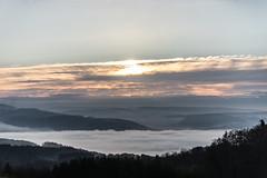 ..:L:A:N:D:S:C:A:P:E:.. (wildbam25) Tags: landscape 70200mm f28 sigma sony ilce7m2 700 mm ƒ28 sonne sun sunray cloud clouds wolken sky fog nebel wald alpen berge alpine