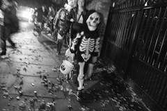 Halloween 2016 in St John's Wood (fabiolug) Tags: skeleton halloween stjohnswood night costume costumes kids kid children child people street streetphotography london leicammonochrom mmonochrom monochrom leicamonochrom leica leicam rangefinder blackandwhite blackwhite bw monochrome biancoenero leicaelmarit28mmf28asph elmarit28mmf28asph elmarit28mm leicaelmarit28mm 28mm elmarit leicaelmarit wide wideangle