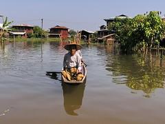 su gente Lago Inle Myanmar Birmania 35 (Rafael Gomez - http://micamara.es) Tags: people de lago casa plantas barca barcos gente burma personas viajes su myanmar inle habitat casas birma birmanie embarcaciones embarcacion birmania