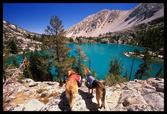 Heidi and Sierra overlooking First Lake (Buck Forester) Tags: mountains film dogs canon heidi view hiking turquoise hike sierra velvia backpacking wilderness polarizer sierranevada wolfpack circularpolarizer hoya fujivelvia50 velvia50 fujivelvia bigpine johnmuirwilderness germanshepherds canonelan7 bigpinecreek firstlake 1740mmf4 glaciersilt heidisierra sierravisions dogbackpacking