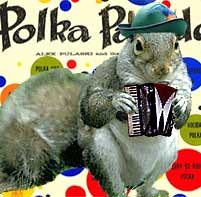polka squirrel