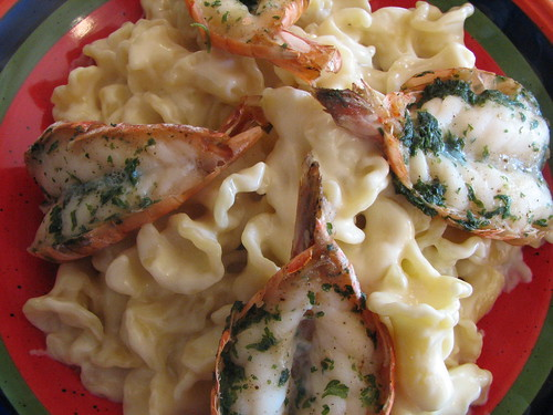 Campanelle & shrimp in creamy garlic sauce