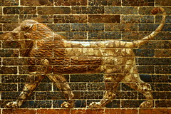 Babylonian Lion at the Royal Ontario Museum (ashour rehana) Tags: toronto brick art wall museum iraq lion culture museo 50mmf18d rom babylon cultura artifacts mesopotamia royalontariomuseum glazed irak assyrian babylonian nebuchadnezzar mesopotamian explored   museumofiraq museodeirak