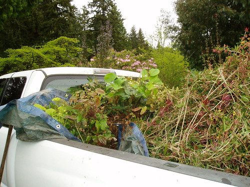 Plant filled Pick-up