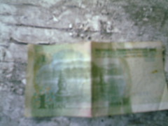1 Yuan other side (Yakima_gulag) Tags: flowers money prettythings