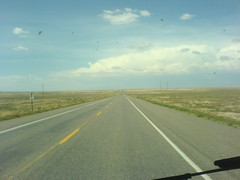 Day5e - Contrast nr Shiprock (Rattlesnake, New Mexico, United States) Photo