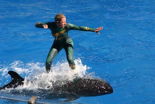 Riding a Whale