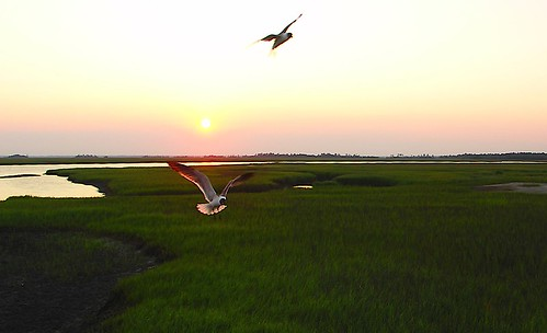 Fripp Island, South Carolina