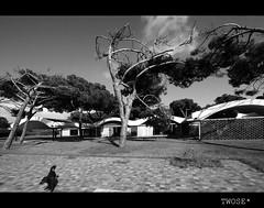 La Ricarda - Antonio Bonet Castellana- 01 - by TwOsE