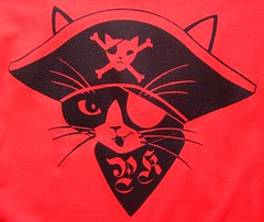 red pirate kitty