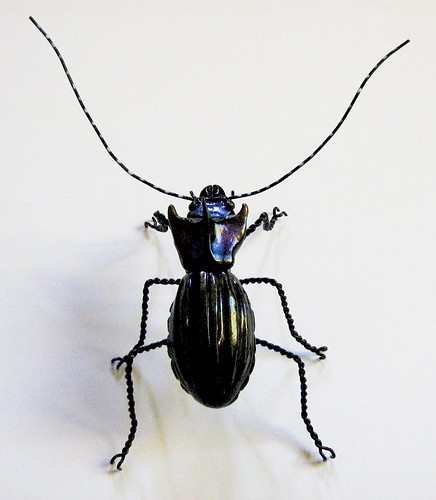 Unreal Beetle