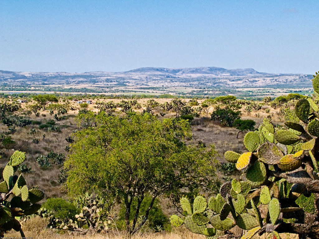 Vista from Los Senderos