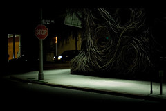 ~ II (jaxting) Tags: ca street city tree shop night dark lights store losangeles nightlights nightshot branches sidewalk stopsign melrose treebranches semiotics parkingmeters jaxting
